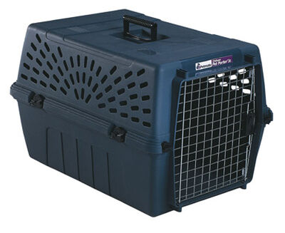 Petmate 24 in. D x 16-5/16 in. W x 14-13/16 in. H Plastic Pet Kennel Brown