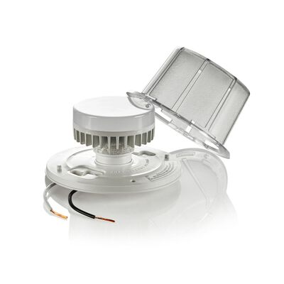 Leviton 10 watts LED Ceiling Keyless Lampholder 250 volts Clear