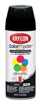 Krylon ColorMaster Black Gloss Spray Paint 12 oz.