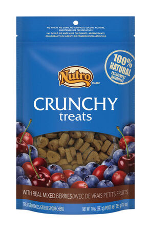 Nutro Crunchy Medium Adult Dog Treats Mixed Berry 10 oz. 1