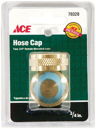 Ace 3/4 in. Brass Hose End Caps Female Threaded