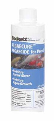 Beckett Algeacure Copper Sulfate Algae Control 5 in. W x 7 in. L