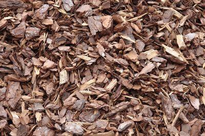 Mulch Pine 2 cf