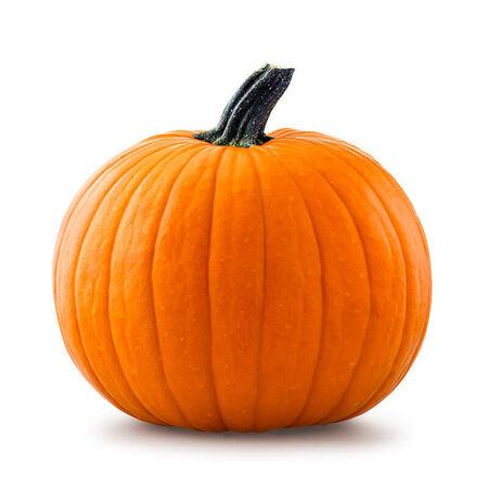 Jack O'Lantern Pumpkin Large
