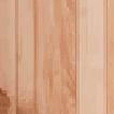 "Panel 4' x 8' x 1/4"" Acadia Birch"