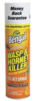 Bengal Foaming Insect Killer For Wasps & Hornets 18 oz.