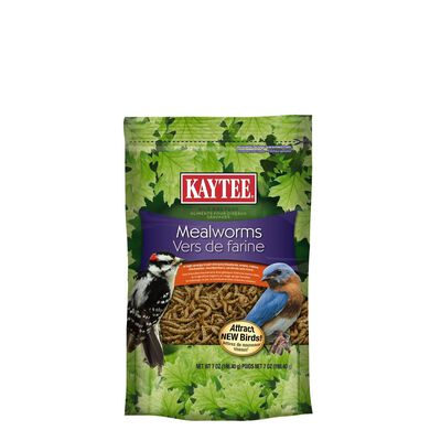 Kaytee Wren Wild Bird Food Mealworms 7 oz.