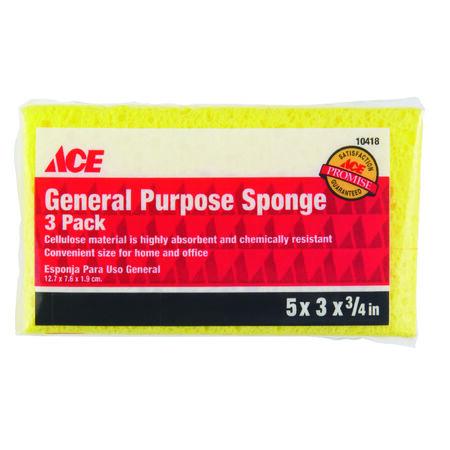 Ace Sponge 4.8 in. L 3 pk