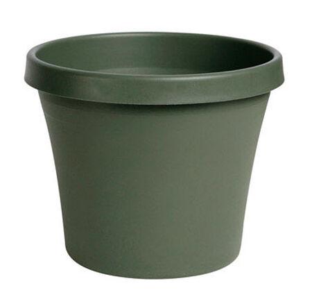 Bloem Terrapot Thyme Green Resin Traditional Planter 14.2 in. H x 16 in. W