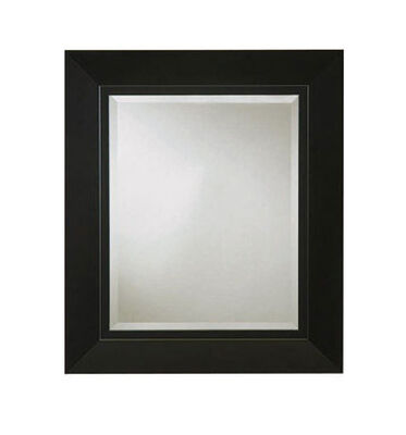 Stanley 23 in. W x 27 in. H Black Door Mirror