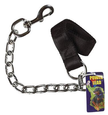 PDQ Power Lead Steel/Nylon Dog Leash 1-1/2 in. W x 2 ft. L
