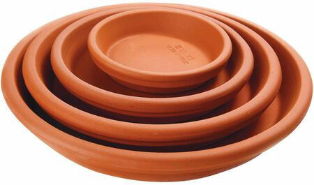 Saucer Planter Clay 12 in
