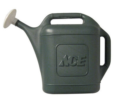 Ace 2 gal. Plastic Green Watering Can