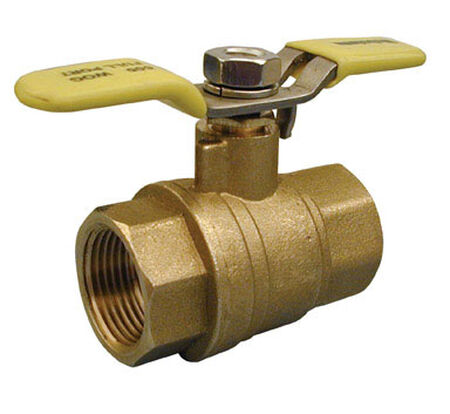 Mueller Ball Valve 3/4 in. FPT Brass Packing Gland