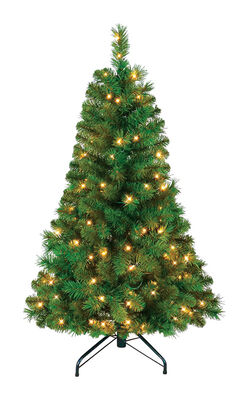 Polygroup Balmoral Warm White 4 ft. H Prelit Christmas Tree 100 lights 251 tips Green