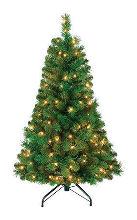 Polygroup Balmoral Warm White 4 ft. H Prelit Christmas Tree 100 lights 251 tips Green