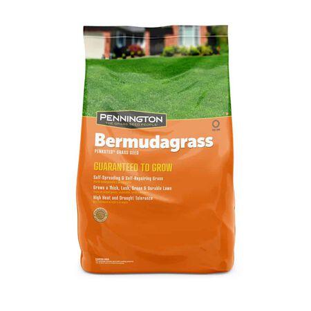 Penn ington Bermuda Grass 15 lb