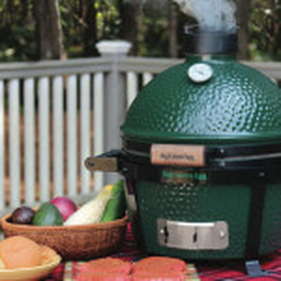 MiniMax Big Green Egg Grill