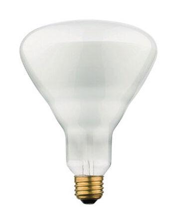 Westinghouse 65 watts 715 lumens 2700 K Medium Base (E26) Floodlight BR40 Incandescent Light Bul