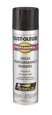 Rust-Oleum Professional Black Gloss Enamel Spray 15 oz.