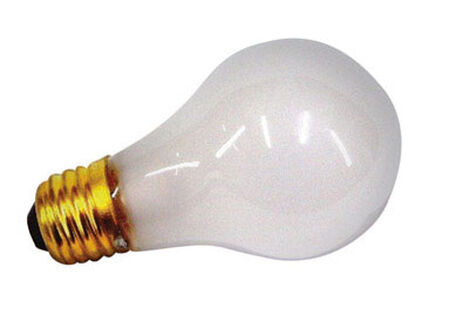 US Hardware Appliance Bulb 100 watts 12 volts