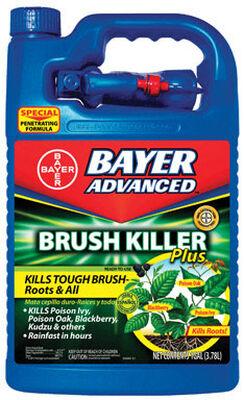 Bayer Advanced Brush Killer Plus 1 gal.