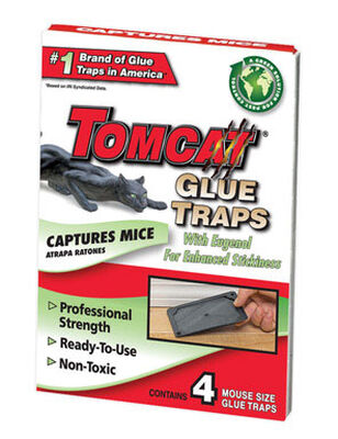 Tomcat Small Plastic Mouse Trap