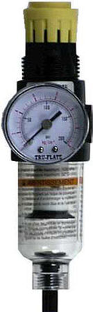Tru-Flate Filter/Regulator with Gauge 1/4 in. NPT