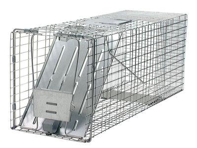 Havahart Bonus Pack Medium Live Catch Animal Trap For Raccoons 2 pk