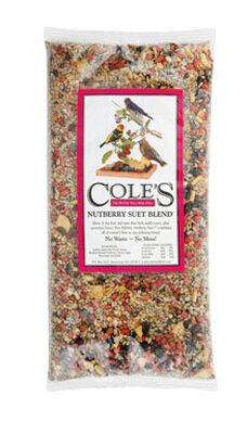 Cole's Assorted Species Nutberry Suet Blend Wild Bird Seed Sunflower Seeds 20 lb.