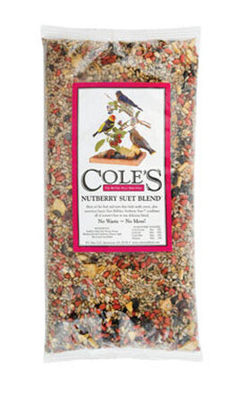 Cole's Assorted Species Nutberry Suet Blend Wild Bird Seed Sunflower Seeds 20 lb.