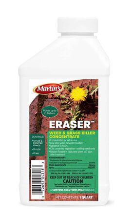Eraser QT