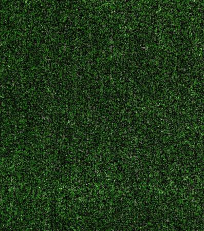 Carpet Grass Tactic Holly Leaf - sold by sqft