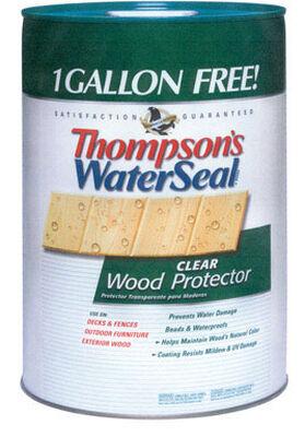 Thompson's Waterseal Oil-Based Waterproofer Wood Protector Clear 6 gal.