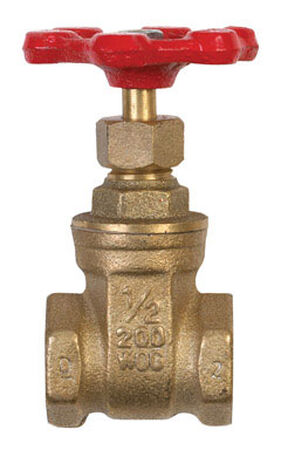 B & K 1/2 in. FPT x 1/2 in. Dia. Red Gate Valve