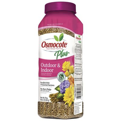 Osmocote Outdoor & Indoor Plant Food For Annuals Container Plants 2 lb.