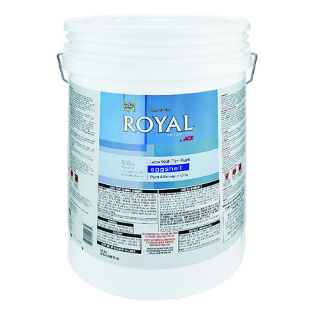 Ace Royal Interior Latex Wall and Trim Paint Ultra White Eggshell 5 gal.