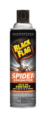 Black Flag Insect Killer For Spiders and Scorpions 16 oz.