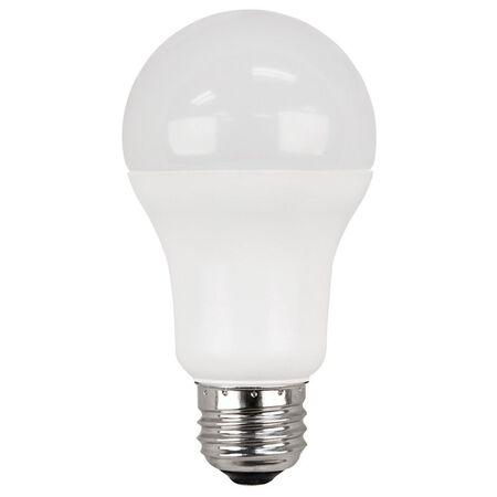 Ace LED Bulb 15 watts 1500 lumens 5000 K A-Line A19 2 pk 100 watts equivalency