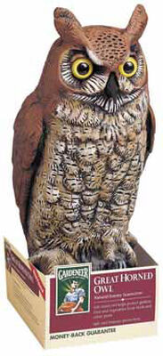 Dalen Great Horned Owl For Birds Animal Repellent 16 in.