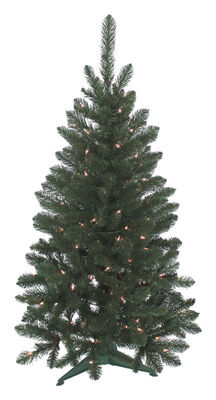 J & J Seasonal Vienna 4 ft. H Clear Prelit Artificial Tree 235 tips 100 lights Green