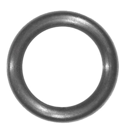 Danco 0.5 in. Dia. Rubber O-Ring 5