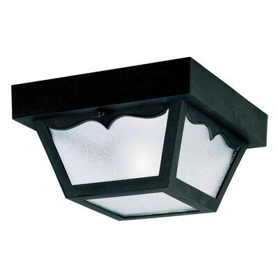 Westinghouse 1 lights Black Outdoor Ceiling Fixture