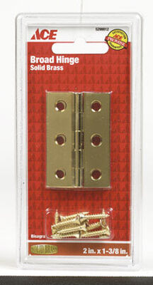 Ace 2 in. W x 1-3/8 in. L Broad Hinge Polished Brass