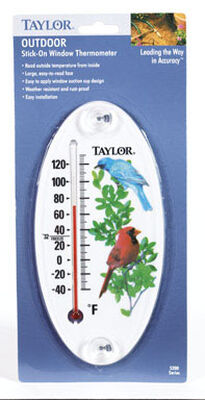 Taylor Bird Design 8-1/2 in. Tube Thermometer Multicolors Outdoor