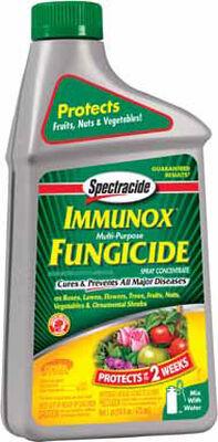 Spectracide Immunox Garden Fungicide 16 oz. Liquid