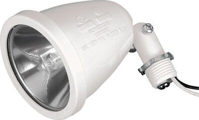 Sigma 100 watts 120 volts Halogen Socket White
