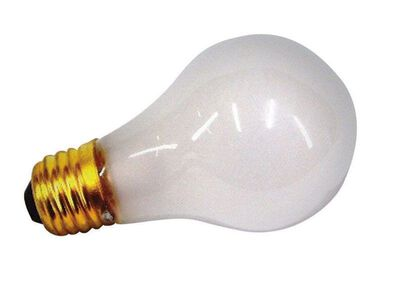 US Hardware Appliance Bulb 75 watts 12 volts