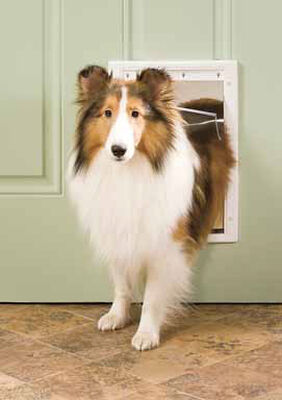 Petsafe Pet Door Medium For Pets up to 40 lb. 8-1/8 in. x 11-3/4 in. White Plastic