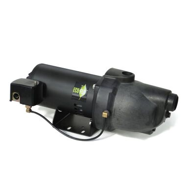 Ecoflo Thermoplastic Shallow Well Jet Pump 3/4 hp 846 gph 230 volts